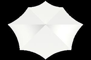 razor octagon