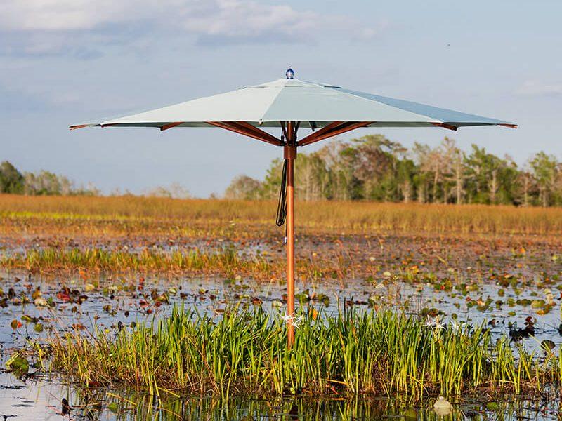 TUUCI in Everglades